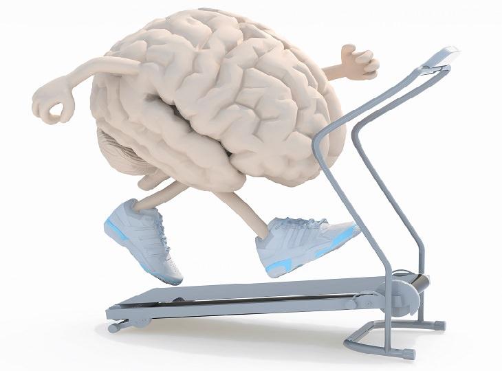 אפקטיבייט לשיפור הזיכרון: איור של מוח רץ על הליכון
