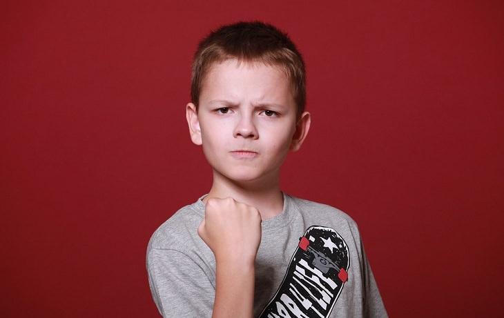 בעיות ויסות רגשי בקרב ילדים: ילד כועס מרים אגרוף