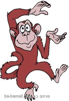 סיפור הקופים - כך עובד שוק המניות