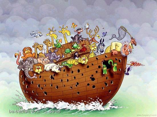 תיבת נוח