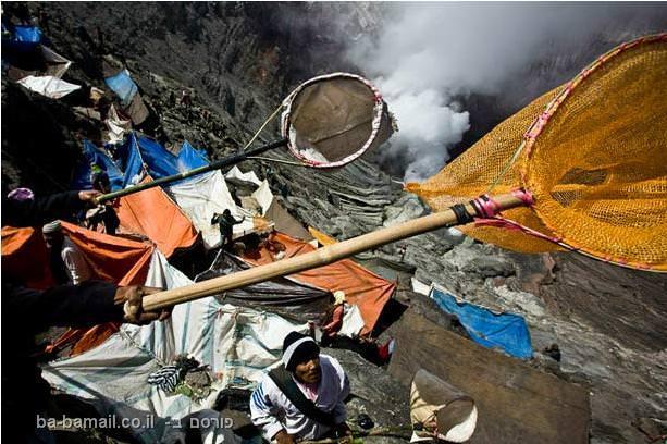 פסטיבל הינדי, ג'אווה, אינדונזיה, טנג'רים, הר ברומו, הר געש, רשת
