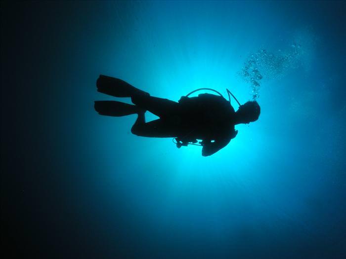 איך לצלם צלליות?