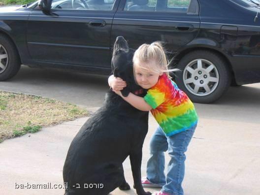 ילדה עם כלב