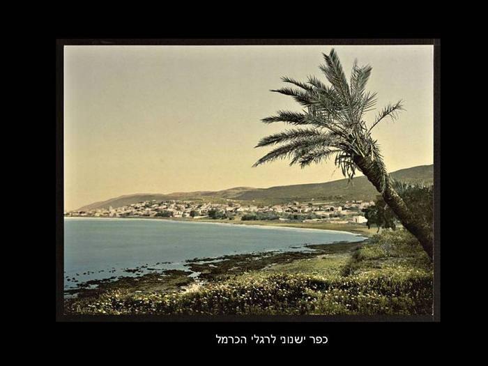 תמונות היסטוריות של חיפה