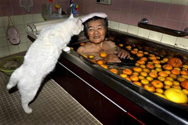 בת 88 מאמצת חתול