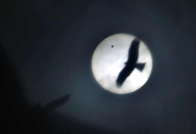 מעבר נוגה על פני השמש 2012