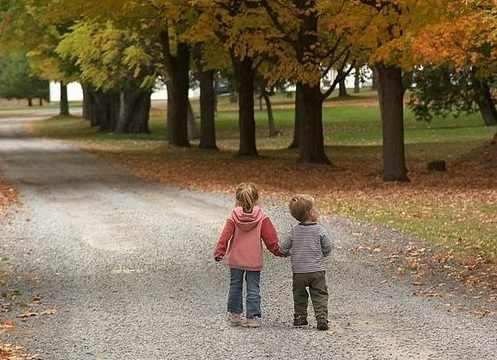 two kids walking on a forest road