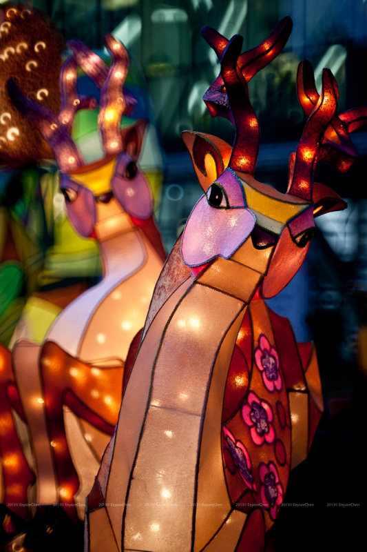 פסטיבל האורות של טאיפיי
