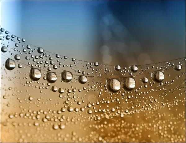 צילום מדהים של טיפות מים