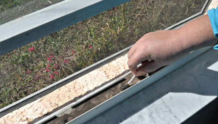 טיפים לניקוי וחידוש הבית: ניקוי מסילות חלון עם מקלון אוזניים