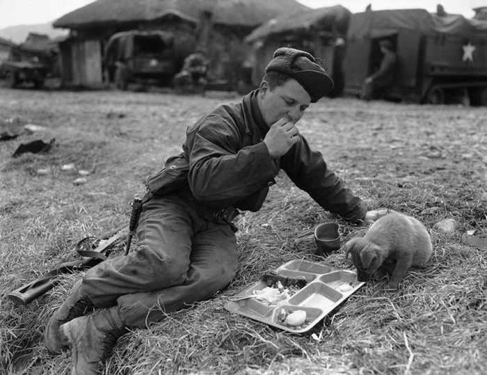 תמונות מרגעים היסטוריים בהם החמלה התגברה על השנאה