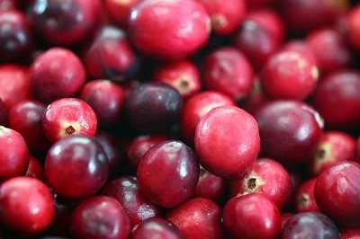 טבלת היתרונות הבריאותיים של פירות יער
