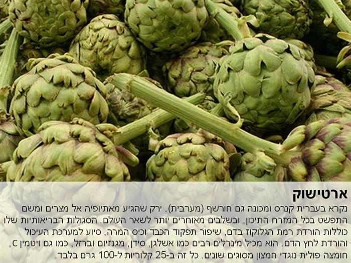 יתרונות בריאותיים של צמחים ממשפחת המורכבים