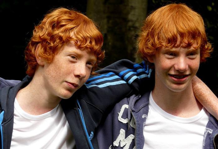 תאומים זהים
