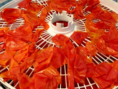 אבקת עגבניות