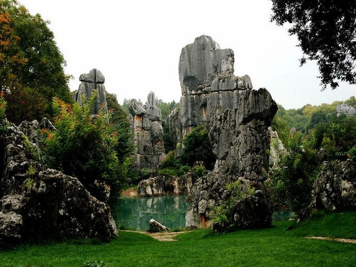 יער האבן בסין