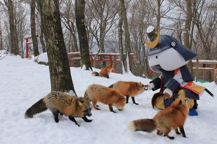 כפר השועלים ביפן