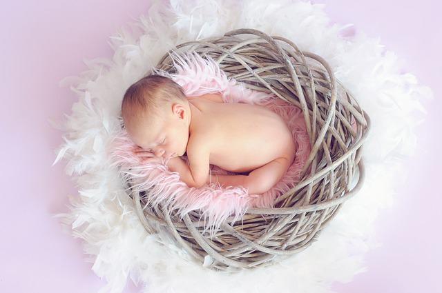 עובדות על תינוקות