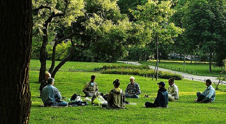 חבורה אנשים מבצעת יוגה בפארק