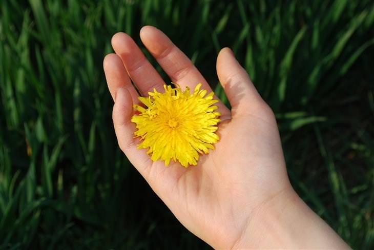 כף יד עם פרח עליה