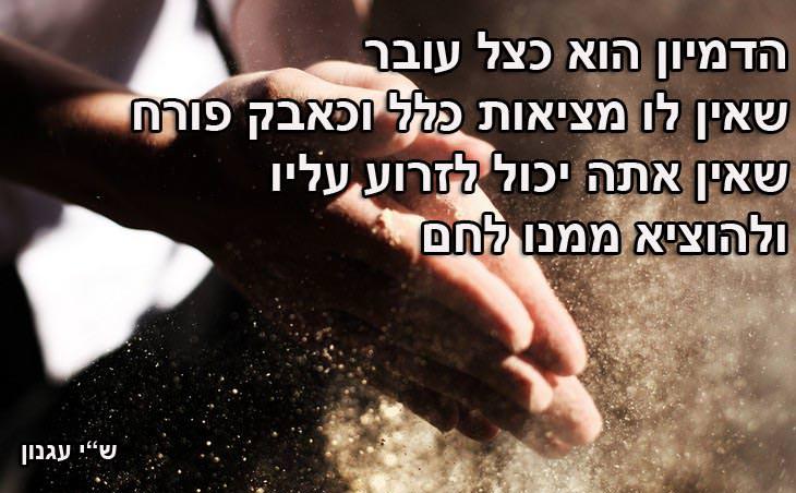 16.הדמיון הוא כצל עובר שאין לו מציאות כלל וכאבק פורח שאין אתה יכול לזרוע עליו ולהוציא ממנו לחם