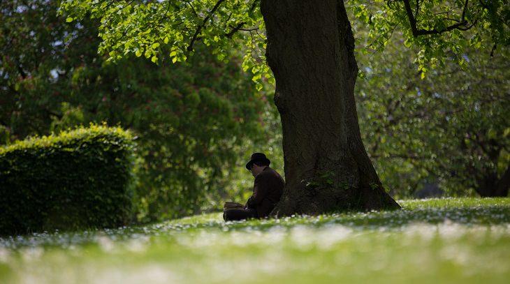 איש יושב תחת עץ וקורא ספר