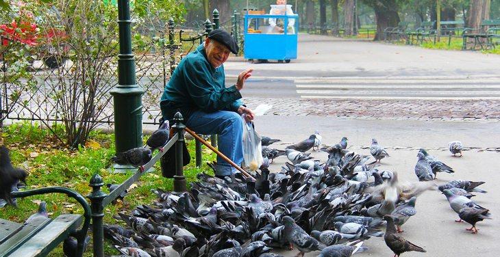 טיפים לחיים מאושרים בגיל הפרישה: איש קשיש מאכיל יונים ועושה שלום למצלמה