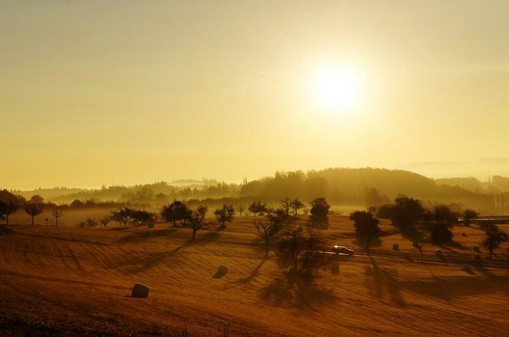 שדה מואר באור שמש