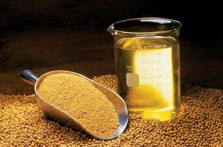 מינרלים וויטמינים שמשפרים מצב רוח: עדשים לצד כוס מדידה מלאה בשמן