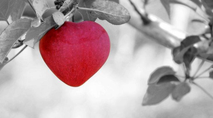 תפוח עץ בצורת לב