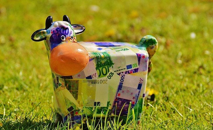 קופת חיסכון בצורת פרה מונחת על דשא