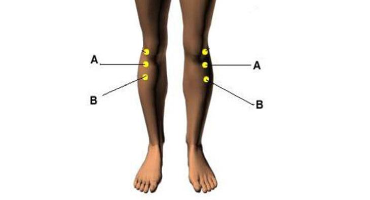 נקודות לחיצה לטיפול בכאבי ברכיים: נקודת עמק ההזנה