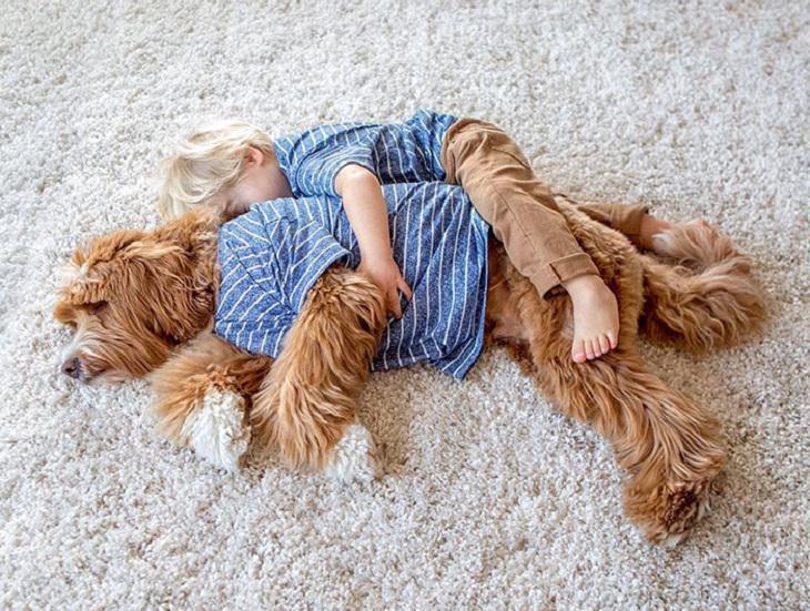 פעוט ישן ומחבק את גבו של כלבו