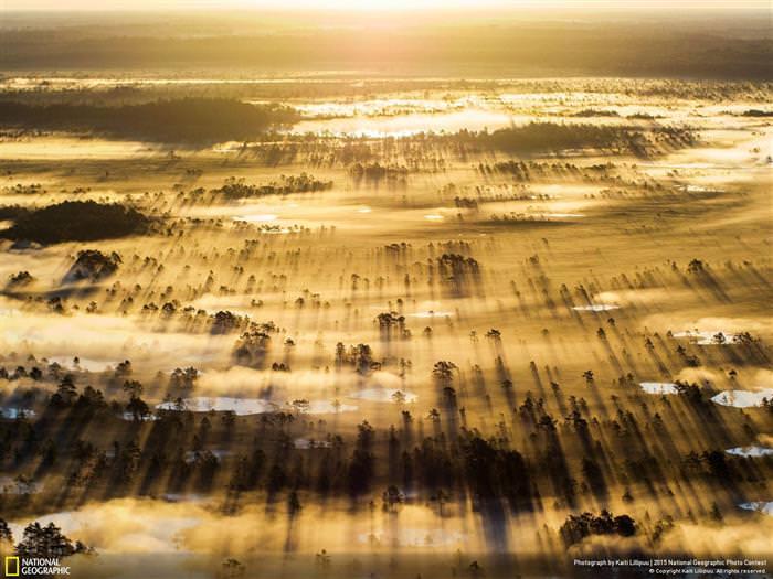 רקעים של נשיונל גאוגרפיק