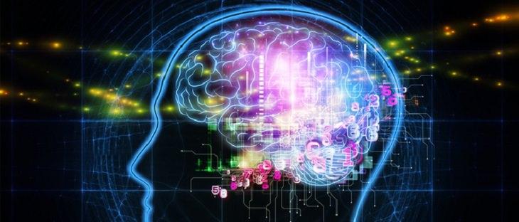 מזונות למוח חזק