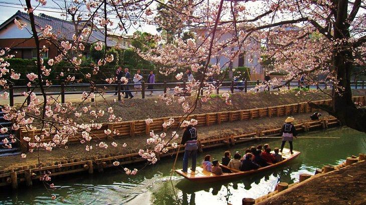 המקומות המדהימים ביותר ביפן: נהר השינגאשי בקוואגו