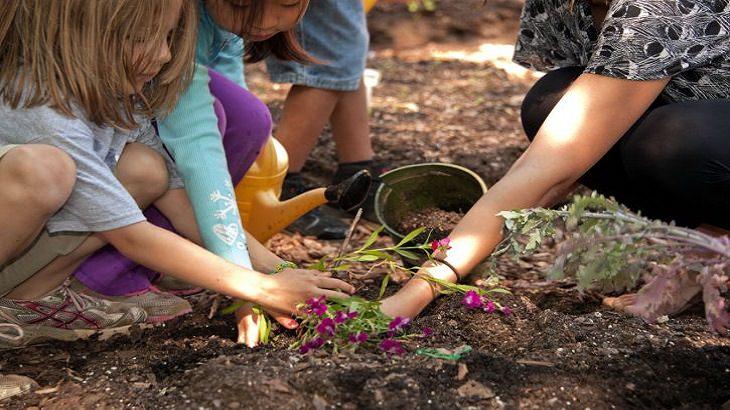 מדריך לגידול פרחים: אישה וילדים שותלים פרח