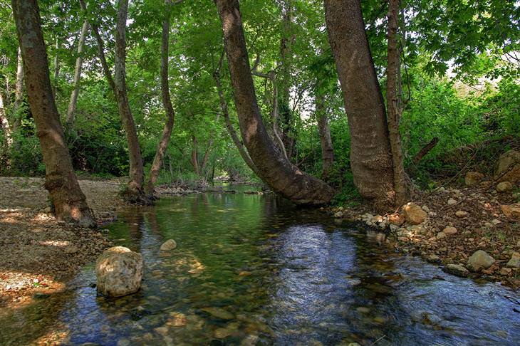 טיולי מים