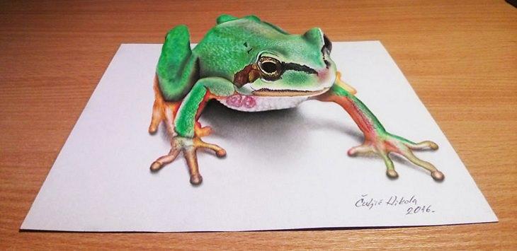 צפרדע בתלת ממד