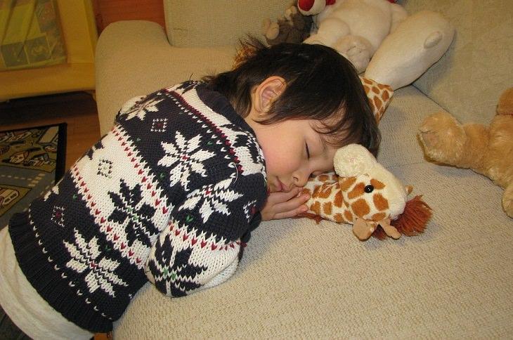 חסרונות של שיעורי בית: ילד שנרדם על בובת ג'ירפה
