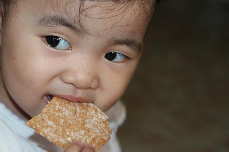 בעיות התנהגות של ילדים: ילד קטן אוכל עוגייה