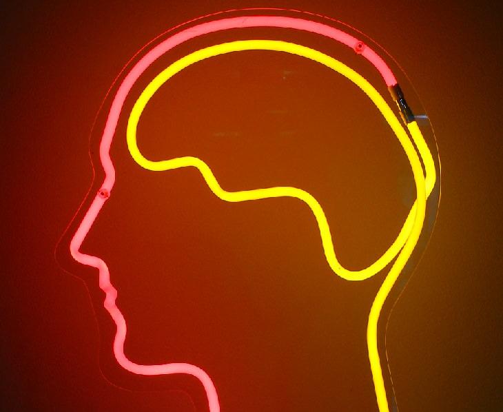 מחקר מצא ששוקולד עוזר לתפקודי המוח