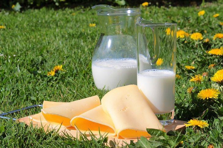 כמויות נחוצות של רכיבים תזונתיים: כוס חלב וגבינה על מצע דשא
