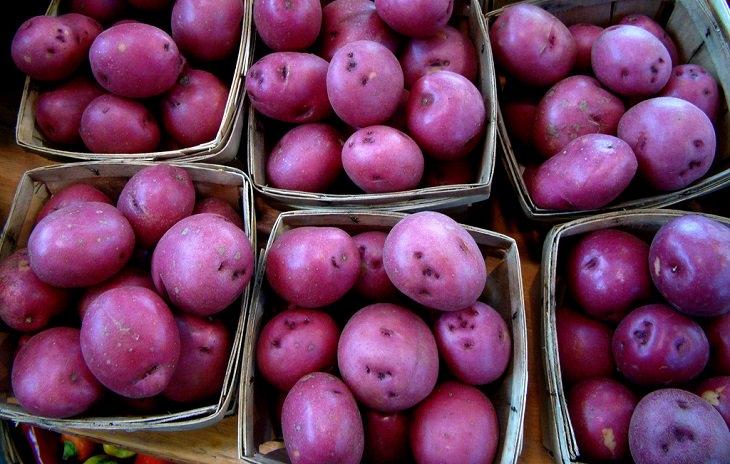 תפוח אדמה סגול כנוגד סרטן: תפוחי אדמה סגולים בסלסלות