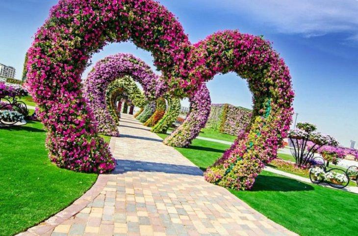 גן הפרחים הגדול ביותר בעולם - Al Ain Paradise