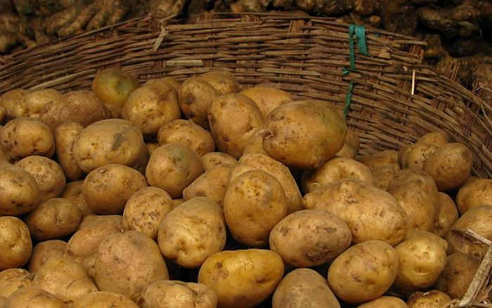 שימושים לתפוחי אדמה: תפוחי אדמה בסלסילת קש