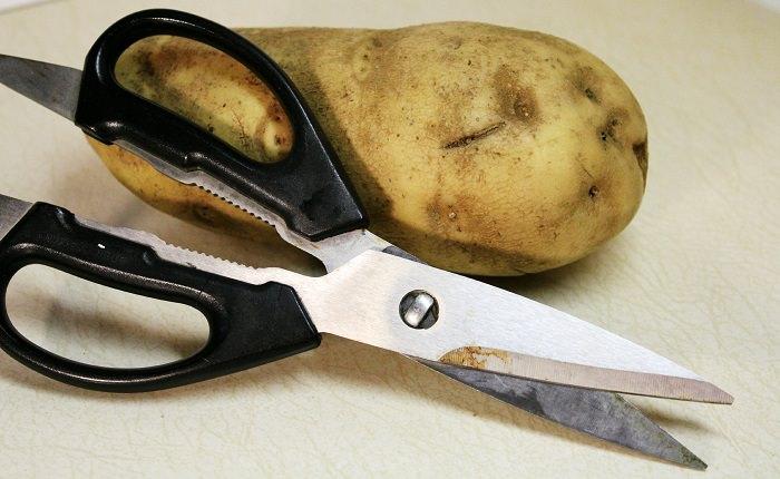 שימושים לתפוחי אדמה: תפוח אדמה ליד מספריים חלודות