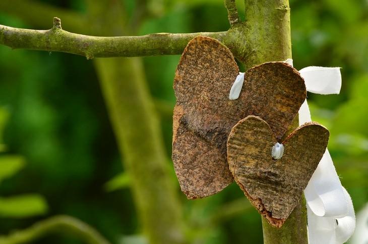שתי לבבות חומים תלויים על עץ