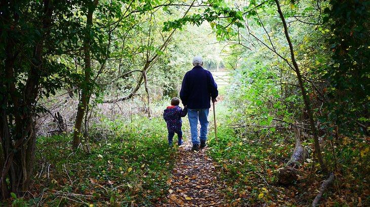 סבא הולך ביער עם נכדו