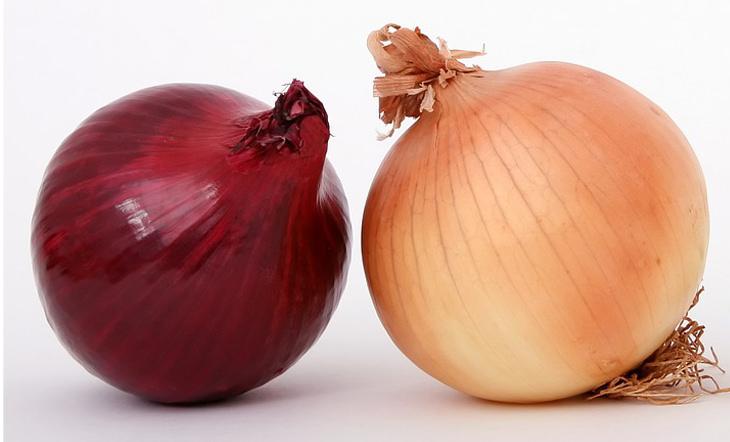 ירקות בגוונים שונים - איזה זן בריא יותר: בצל צהוב וסגול